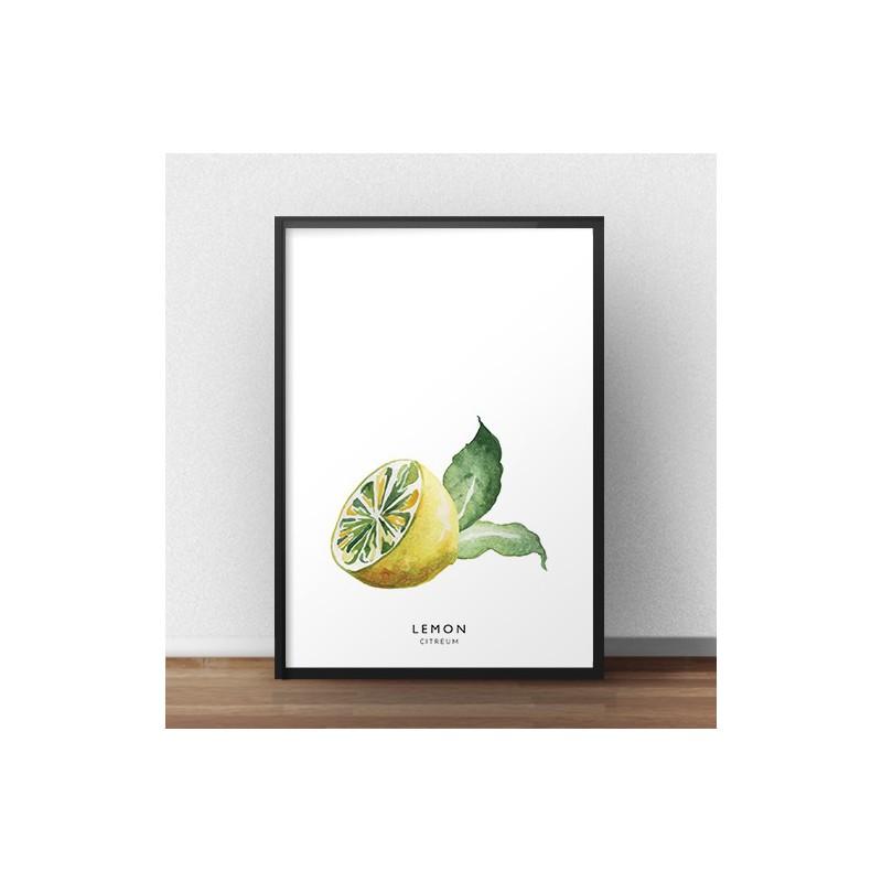 Colorful poster Half a lemon