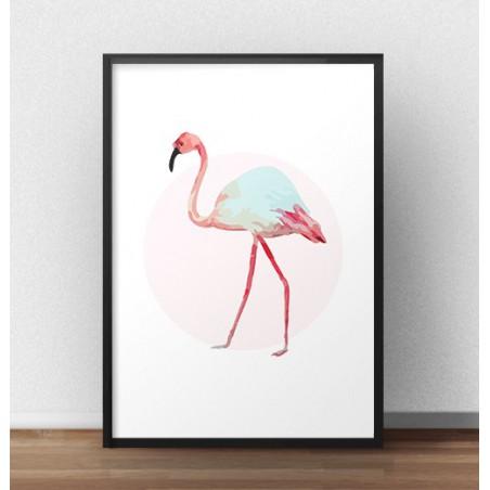 Plakat z białym flamingiem