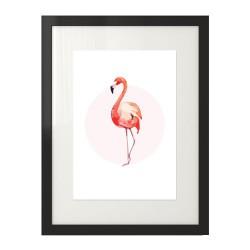 Plakat na ścianę z różowym flamingiem stojącym przodem oprawiony w czarną ramę
