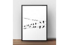 Elegancki i minimalistyczny plakat przedstawiający siedzące ptaki na kablach od słupów elektrycznych