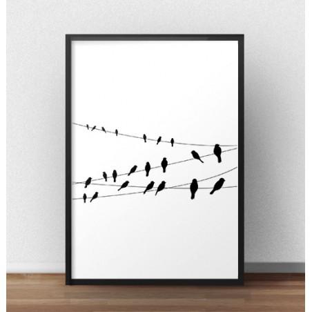 "Czarno-biały plakat ""Cable Birds"""