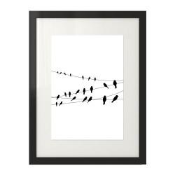 Czarno-biały plakat z ptakami siedzącymi na kablach