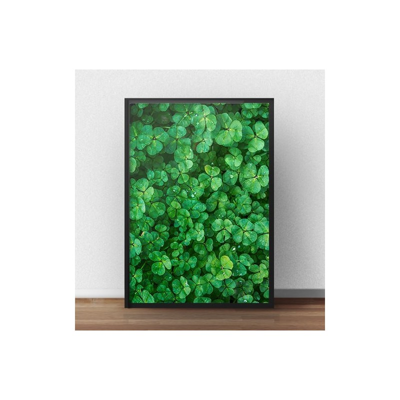 Poster for the wall Green clover