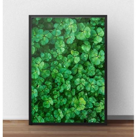 """Plakat na ścianę """"Zielona koniczyna"""""""