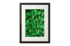 Niezwykle zielony plakat na ścianę Twojego wnętrza z zieloną koniczyną
