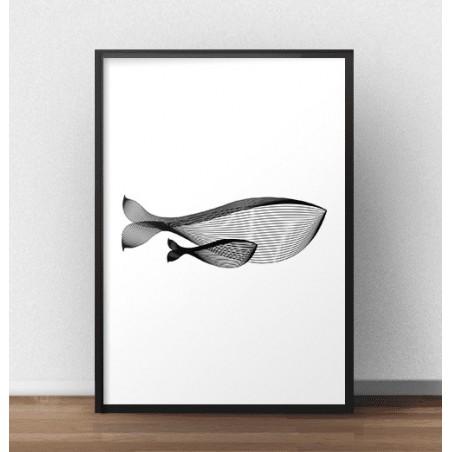 """Nowoczesny plakat """"Wieloryb"""""""
