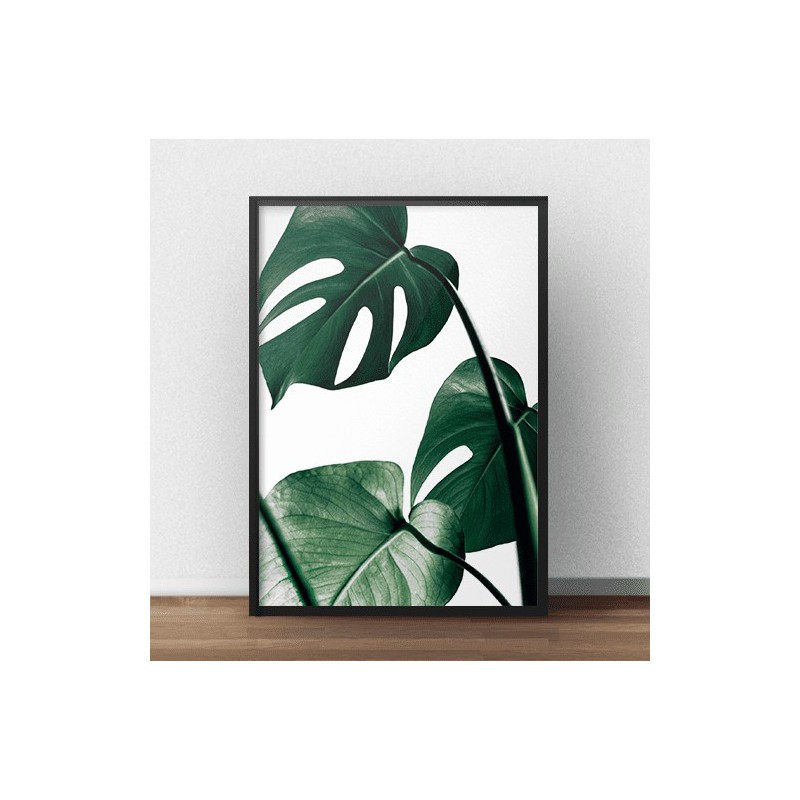 Colorful photo poster Monstera
