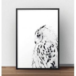 Plakat na ścianę z białą sową