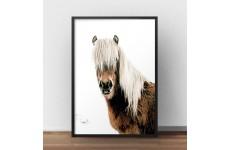 """Plakat na ścianę z koniem """"Horse"""""""