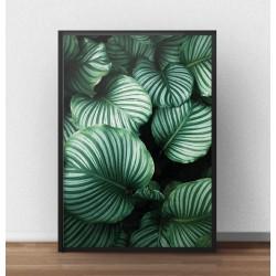 Skandynawski plakat fotograficzny z dużymi zielonymi liśćmi