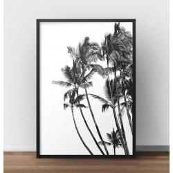 """Modernistyczny plakat """"Palmy"""" do powieszenia na ścianie salonu lub sypialni"""