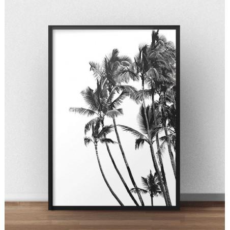 """Minimalistyczny plakat """"Palmy"""""""