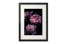 Plakat w stylu glamour z kwiatami peonii