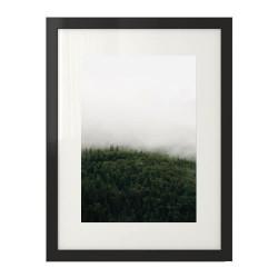 Plakat w stylu skandynawskim przedstawiający las we mgle