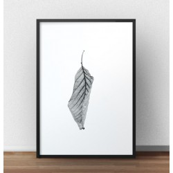 Minimalistyczny plakat przedstawiający suchego liścia. Plakat utrzymany w czarno-białej kolorystyce