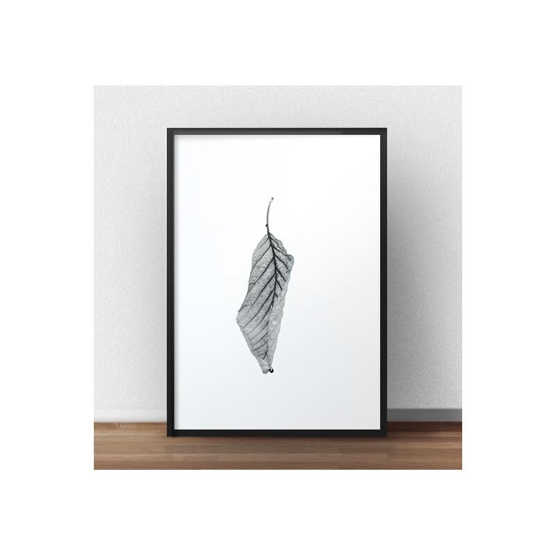 Minimalistyczny plakat Suchy liść