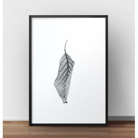 """Minimalistyczny plakat """"Suchy liść"""""""