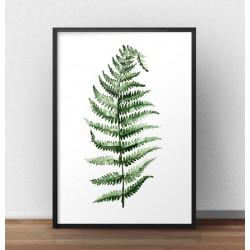 Plakat z zielonym liściem paproci na białym tle