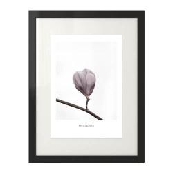 Wytworna grafika dekoracyjna na ścianę z kwiatem magnolii