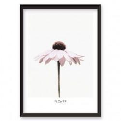 """Plakat z różowym kwiatkiem """"Flower"""" oprawiony w ramkę bez passepartout"""