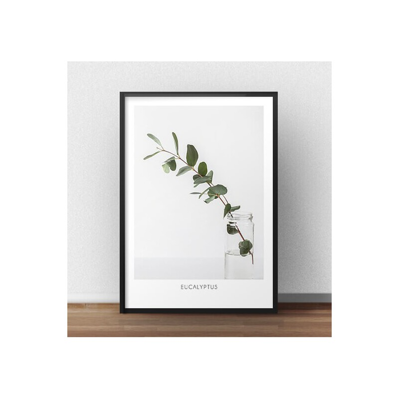 Poster for the wall Eucalyptus