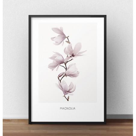 Plakat z gałązką magnolii