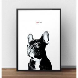 "Plakat z buldożkiem ""I love my dog"""