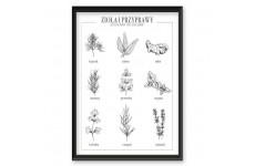 Plakat do kuchni z ziołami i przyprawami w języku polskim