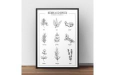 Plakat kuchenny z ziołami w języku angielskim - herbs and spices