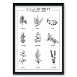 Plakat kuchenny ze spisem popularnych ziół i przypraw wchodzący w skład zestawu plakatów do kuchni oraz jadalni