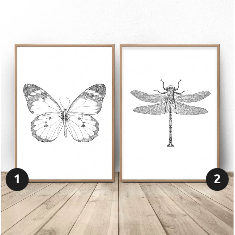 Set of 2 posters with dragonfly and butterfly