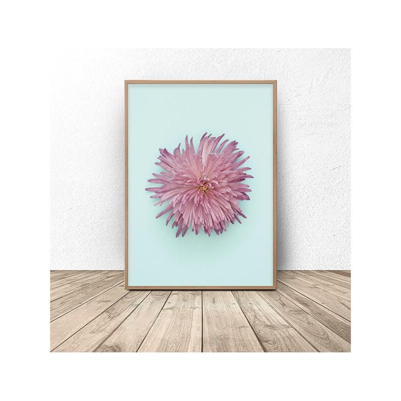 Pastel wall poster Chrysanthemum