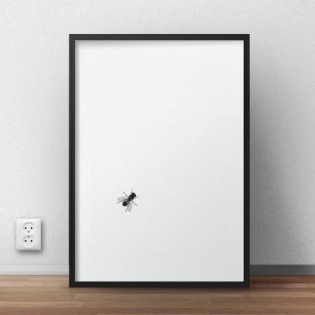 Plakat z siedzącą na nim muchą