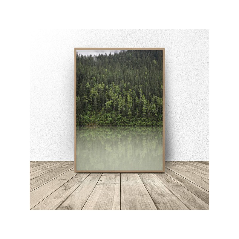 Scandinavian poster Forest by the lake