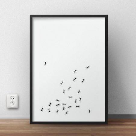 Plakat z chodzącymi po nim mrówkami