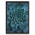Botanical poster Beautiful cactus 2