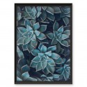 Botanical poster Small succulents 2