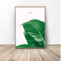 Botanical poster Less is more