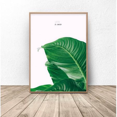 "Plakat botaniczny ""Less is more"""
