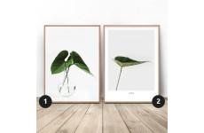 Zestaw dwóch plakatów z liśćmi