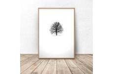 """Plakat minimalistyczny """"Samotne drzewo"""""""