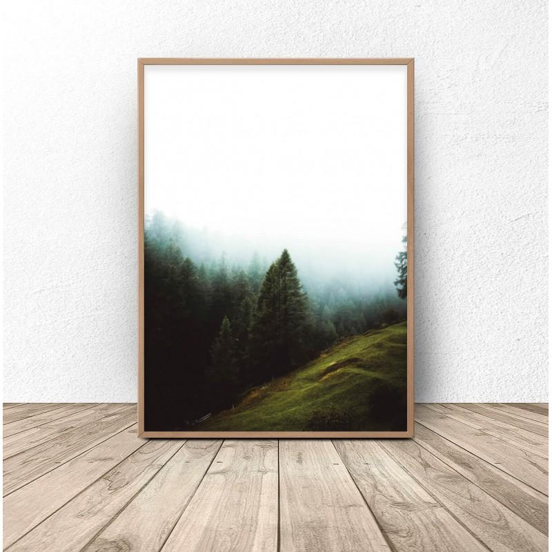 Plakat na ścianę Leśna polana