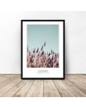 Delicate decorative poster Lavender 2