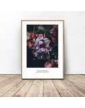 Set of two posters Love Hydrangea 2