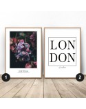 Set of two posters Hydrangea in London