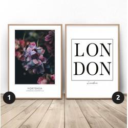 """Zestaw dwóch plakatów """"Hortensja w Londynie"""""""