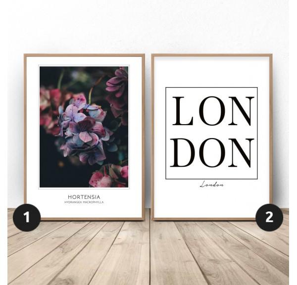 Zestaw dwóch plakatów Hortensja w Londynie
