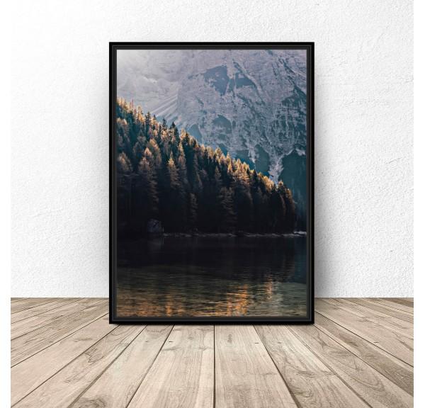 Plakat na ścianę Las w górach