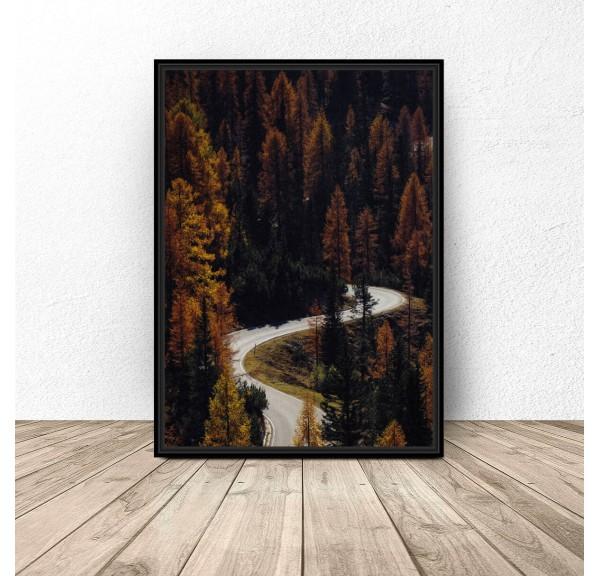 Plakat na ścianę Droga przez las
