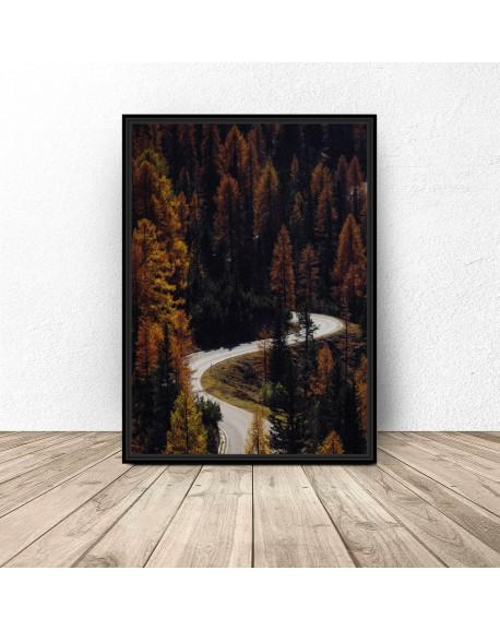 """Plakat na ścianę """"Droga przez las"""""""